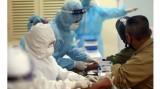 13日上午越南无新增新冠肺炎确诊病例