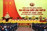 Nhiều ý kiến sâu sắc và tâm huyết gửi đến Đại hội đại biểu Đảng bộ tỉnh Bình Dương lần thứ XI