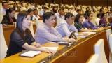 越南第十四届国会第十次会议新闻公报(第十六号)