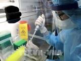 河内市出现疑似病例的新冠病毒检测结果属阴性