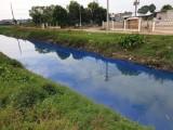 Nước kênh D đổi màu xanh khiến người dân lo lắng