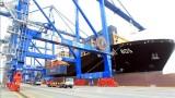 2020年越南港口货物吞吐量同比增长5%
