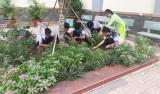 Trường THCS Khánh Bình: Chú trọng giáo dục học sinh kỹ năng sống