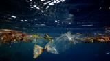 越南将为减少塑料废弃物污染作出强有力行动