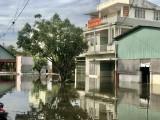 Sẽ còn triều cường trên sông Sài Gòn đến Tết Nguyên đán