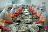 Shrimp exporters bring home 3.85 billion USD in 2020
