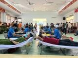 Hội Chữ thập đỏ huyện Phú Giáo: Tiếp nhận 178 đơn vị máu tình nguyện