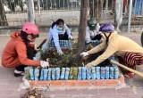 Hội Liên hiệp Phụ nữ TP.TDM: Ra quân dọn vệ sinh đường phố