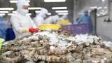 虾类出口成为水产业的亮点