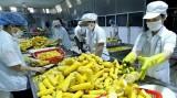 RCEP给越南农产品出口带来哪些商机?