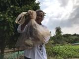Xã Thanh Tuyền, Dầu Tiếng: Nhiều mô hình kinh tế hiệu quả