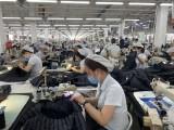 Nắm bắt cơ hội, chủ động tham gia chuỗi cung ứng toàn cầu - Kỳ 1