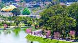 春节期间林同省大叻市接待游客量下降83%