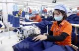 Xuất khẩu hàng hóa Việt Nam sang Australia tăng trưởng vượt bậc