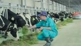 2021年越南畜牧业力争实现平均产值增长约5-6%的目标