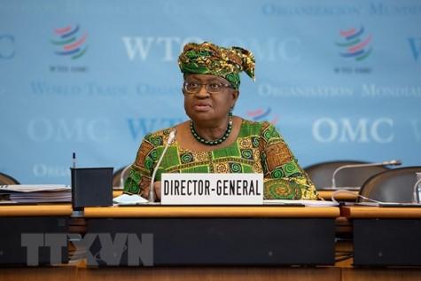 Những ưu tiên của Tân Tổng giám đốc Tổ chức Thương mại Thế giới