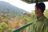 Nặng nợ với những cánh rừng