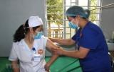 Việt Nam không ghi nhận ca mắc mới COVID-19 trong 36 giờ qua