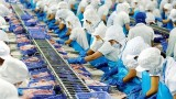 国际货币基金组织预测2021年越南GDP将增长6.5%