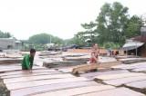 Vực dậy làng nghề bánh tráng Phú An