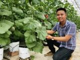 Khởi nghiệp thành công với nghề nông