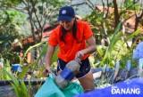 旅居岘港外国人携手整治环境卫生