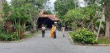 清源竹林禅院:恢复生活平衡的地点