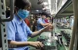 越南企业发展释放积极向好迹象