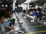 Hiệp định Thương mại Việt Nam-Chile tạo đà tăng trưởng thương mại