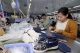 Increase in Vietnam – Belgium trade brings more opportunities for investors: Experts