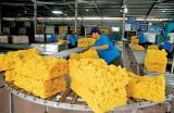 橡胶是2021年前四个月越南农林水产品出口的亮点