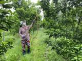 Phát triển chuỗi cung ứng, nâng tầm nông sản địa phương