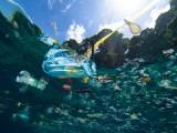 东盟启动《应对海洋塑料垃圾的行动计划》