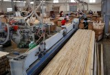 Despite COVID-19, industrial production index up