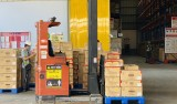 Export regains its pace of growth