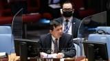 越南与联合国安理会:越南敦促各方接受联合国提出的也门和平倡议