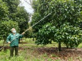 鼓励将农产品上架电商平台