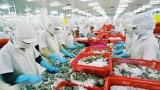 越南对美国水产品出口额达近7亿美元