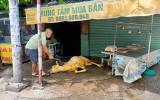 Cơ sở giết mổ gia súc tự phát trên vỉa hè: Chính quyền địa phương đã vào cuộc xử lý