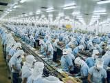九龙江三角洲地区的水产出口领跑全国
