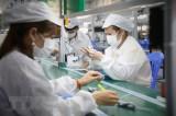 TP.HCM: Doanh nghiệp quyết tâm duy trì sản xuất giữa tâm dịch