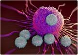 Các nhà khoa học tìm ra cơ chế cải thiện phản ứng miễn dịch
