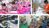 2021年越南经济增长的两种可能情景