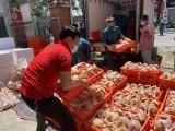 Bình Phước vận chuyển hàng chục tấn thực phẩm ủng hộ Bình Dương phòng, chống Covid-19