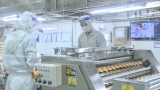 Enterprises strongly carry out safe production solutions