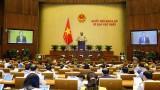 越南第十五届国会第一次会议新闻公报(第四号)