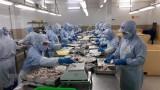 Vietnam sees 15.5 percent rise in exports in EU market
